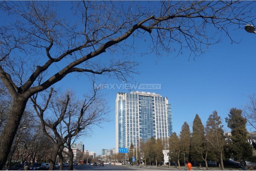 Joy Court 永利国际屯三里公寓