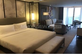 雅诗阁山水文园服务公寓1bedroom60sqm¥19,000